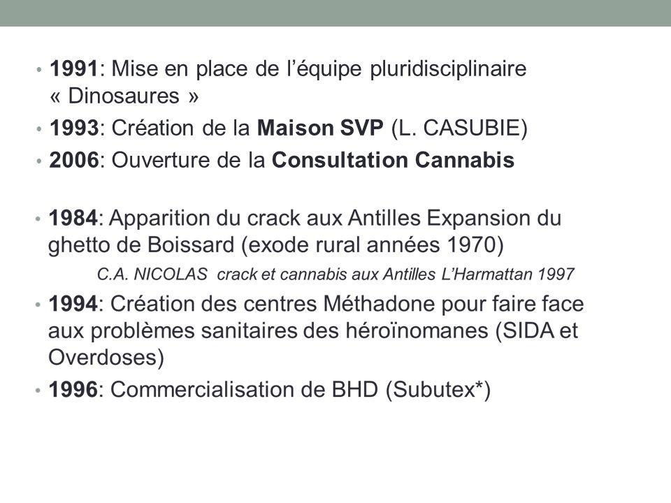 1991: Mise en place de léquipe pluridisciplinaire « Dinosaures » 1993: Création de la Maison SVP (L.