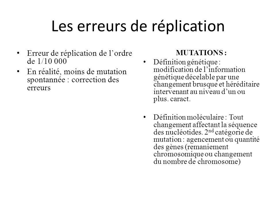 Les erreurs de réplication Erreur de réplication de lordre de 1/10 000 En réalité, moins de mutation spontannée : correction des erreurs MUTATIONS : D