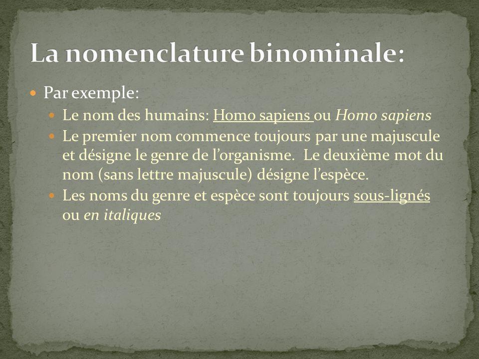 Par exemple: Le nom des humains: Homo sapiens ou Homo sapiens Le premier nom commence toujours par une majuscule et désigne le genre de lorganisme. Le