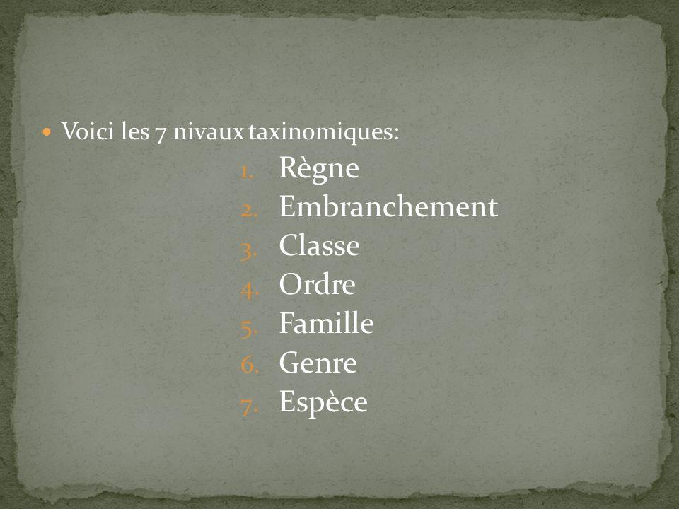 Voici les 7 nivaux taxinomiques: 1. Règne 2. Embranchement 3. Classe 4. Ordre 5. Famille 6. Genre 7. Espèce