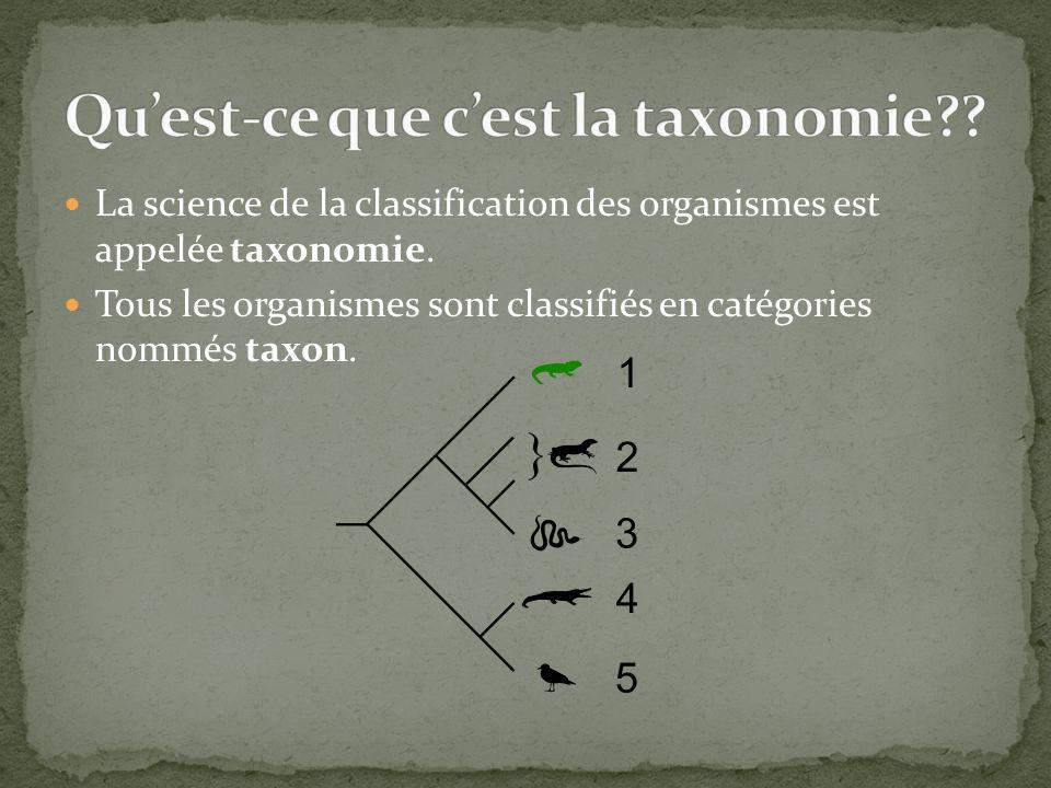 La science de la classification des organismes est appelée taxonomie. Tous les organismes sont classifiés en catégories nommés taxon.