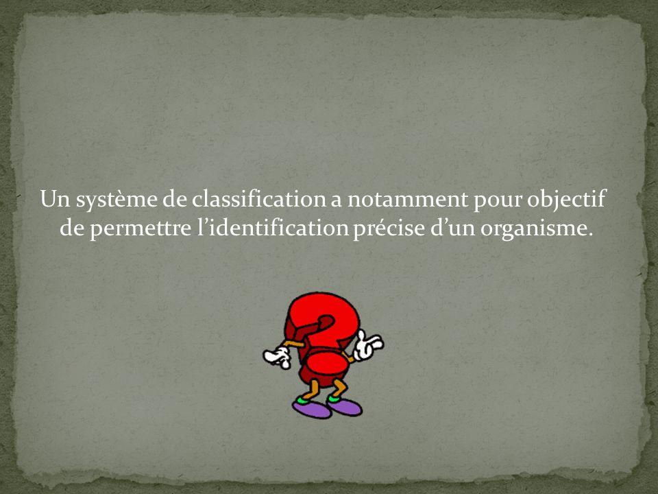 Un système de classification a notamment pour objectif de permettre lidentification précise dun organisme.