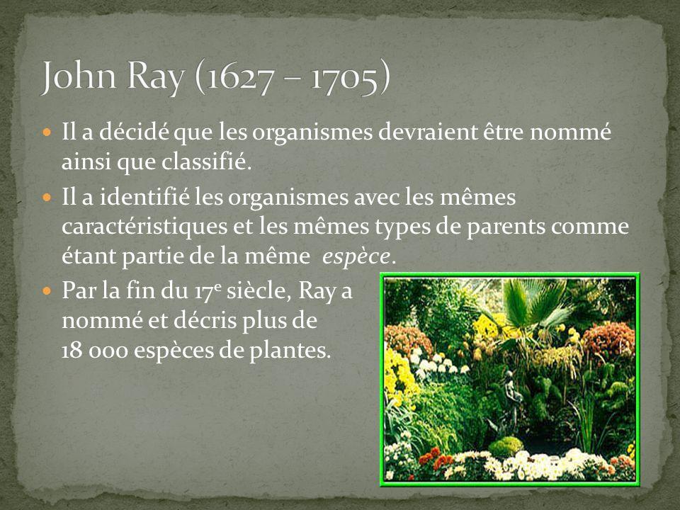 Est un botaniste suédois qui a fait une contribution majeure à la taxinomie.