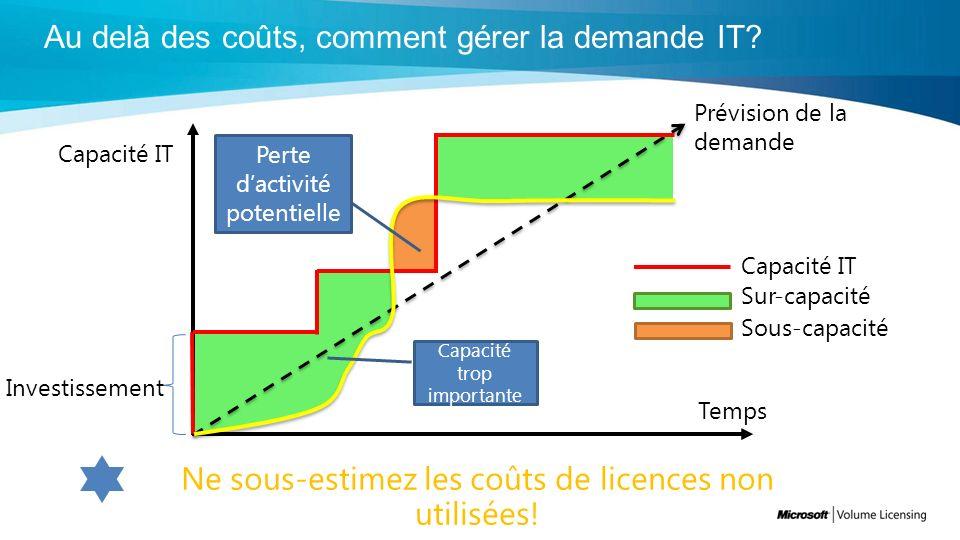 Temps Capacité IT Investissement Sous-capacité Sur-capacité Prévision de la demande Capacité IT Perte dactivité potentielle Capacité trop importante Ne sous-estimez les coûts de licences non utilisées!