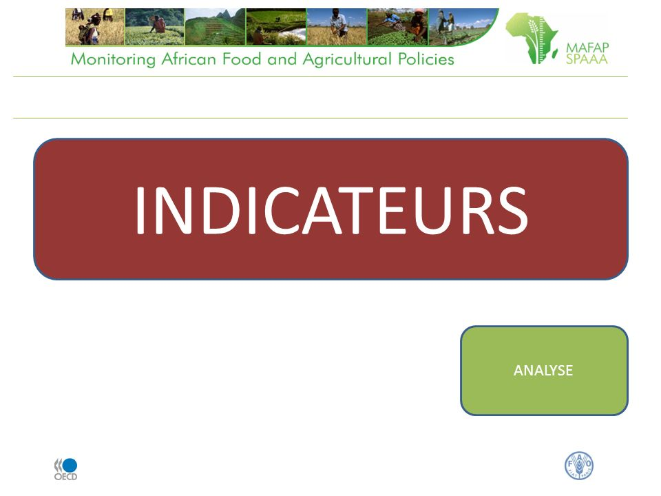 INDICATEURS ANALYSE