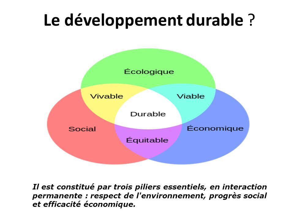 Le développement durable ? Il est constitué par trois piliers essentiels, en interaction permanente : respect de l'environnement, progrès social et ef