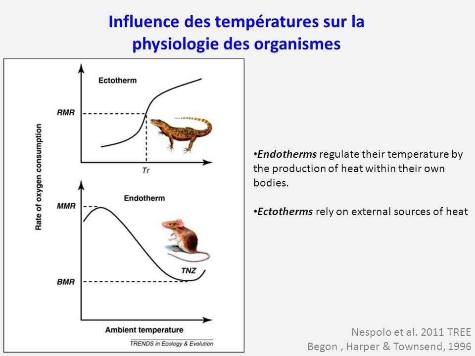 Influence des températures sur la physiologie des organismes Nespolo et al. 2011 TREE Begon, Harper & Townsend, 1996 Endotherms regulate their tempera