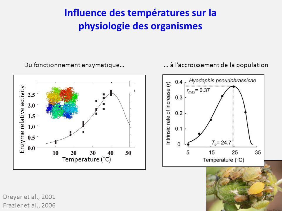 Dreyer et al., 2001 Frazier et al., 2006 Influence des températures sur la physiologie des organismes Temperature (°C) Enzyme relative activity Du fon