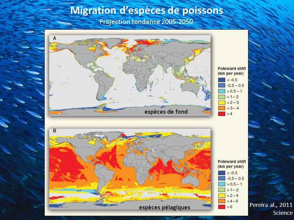 Migration despèces de poissons Pereira al., 2011 Science Projection tendance 2005-2050 espèces de fond espèces pélagiques