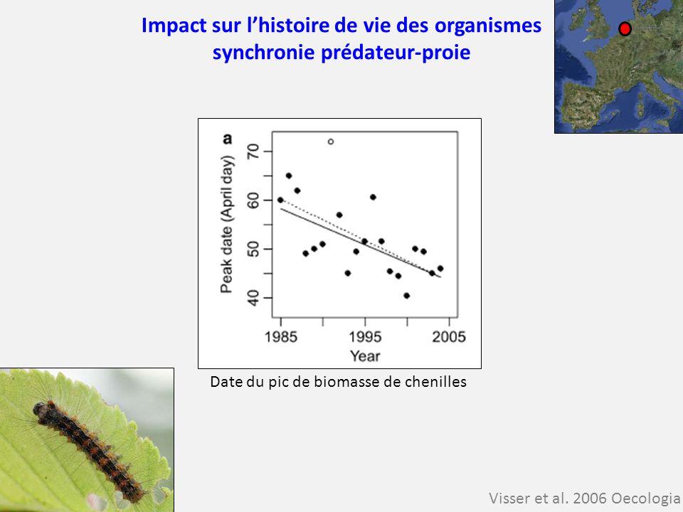 Impact sur lhistoire de vie des organismes synchronie prédateur-proie Visser et al. 2006 Oecologia Date du pic de biomasse de chenilles