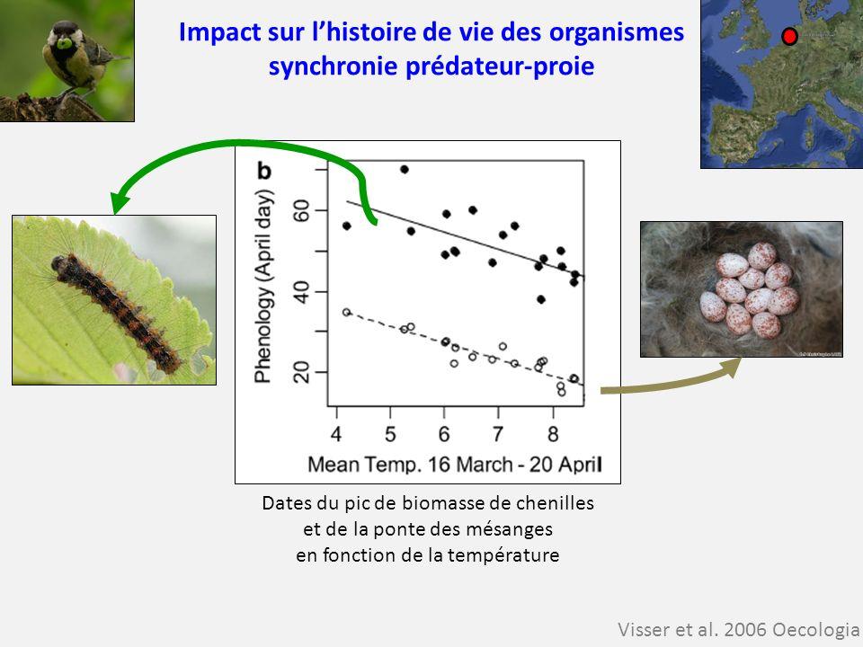 Impact sur lhistoire de vie des organismes synchronie prédateur-proie Visser et al. 2006 Oecologia Dates du pic de biomasse de chenilles et de la pont