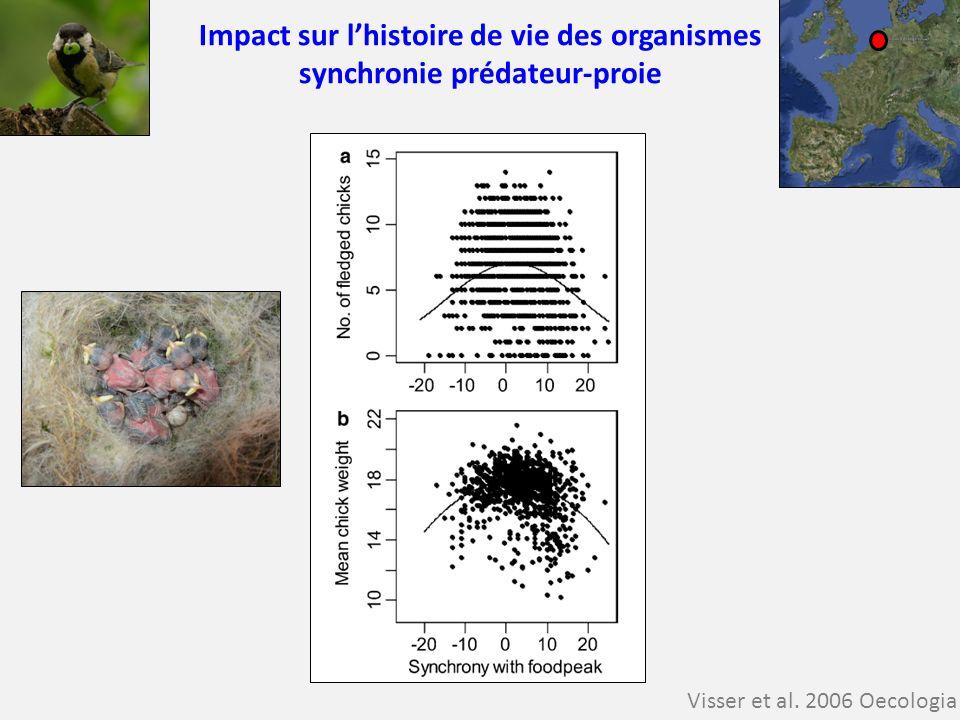 Impact sur lhistoire de vie des organismes synchronie prédateur-proie Visser et al. 2006 Oecologia