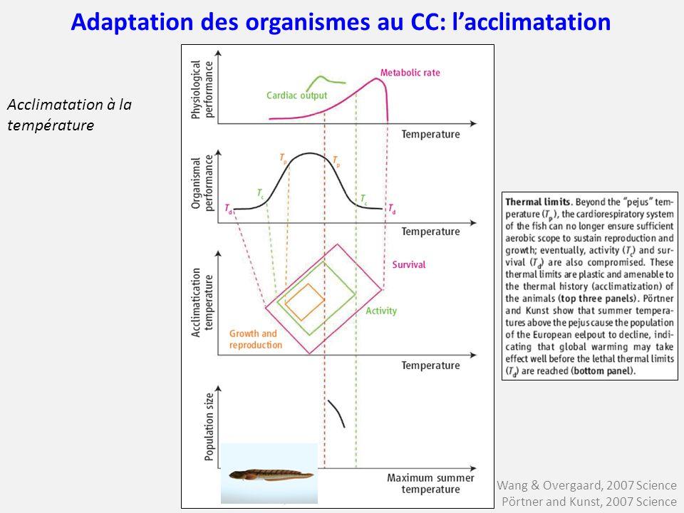 Wang & Overgaard, 2007 Science Pörtner and Kunst, 2007 Science Adaptation des organismes au CC: lacclimatation Acclimatation à la température