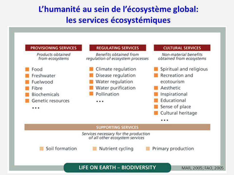 Lhumanité au sein de lécosystème global: les services écosystémiques MAR, 2005; FAO, 2005