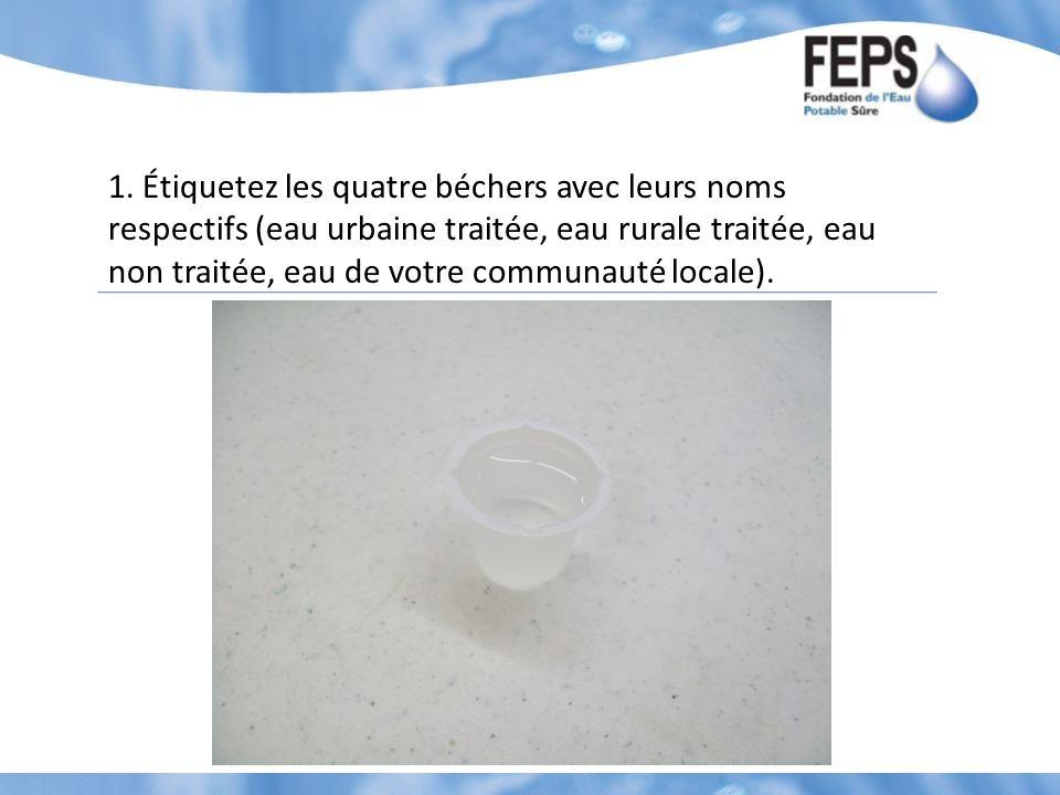 1. Étiquetez les quatre béchers avec leurs noms respectifs (eau urbaine traitée, eau rurale traitée, eau non traitée, eau de votre communauté locale).