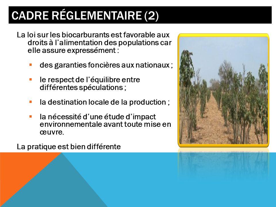 CADRE RÉGLEMENTAIRE (2) La loi sur les biocarburants est favorable aux droits à lalimentation des populations car elle assure expressément : des garan