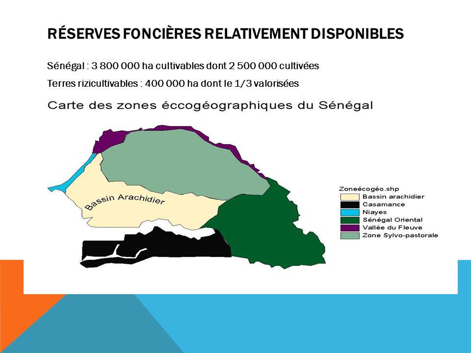 RÉSERVES FONCIÈRES RELATIVEMENT DISPONIBLES Sénégal : 3 800 000 ha cultivables dont 2 500 000 cultivées Terres rizicultivables : 400 000 ha dont le 1/