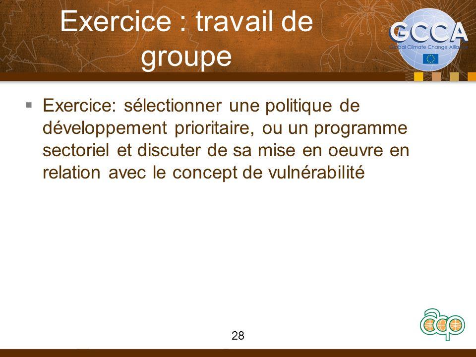 Exercice : travail de groupe Exercice: sélectionner une politique de développement prioritaire, ou un programme sectoriel et discuter de sa mise en oeuvre en relation avec le concept de vulnérabilité 28