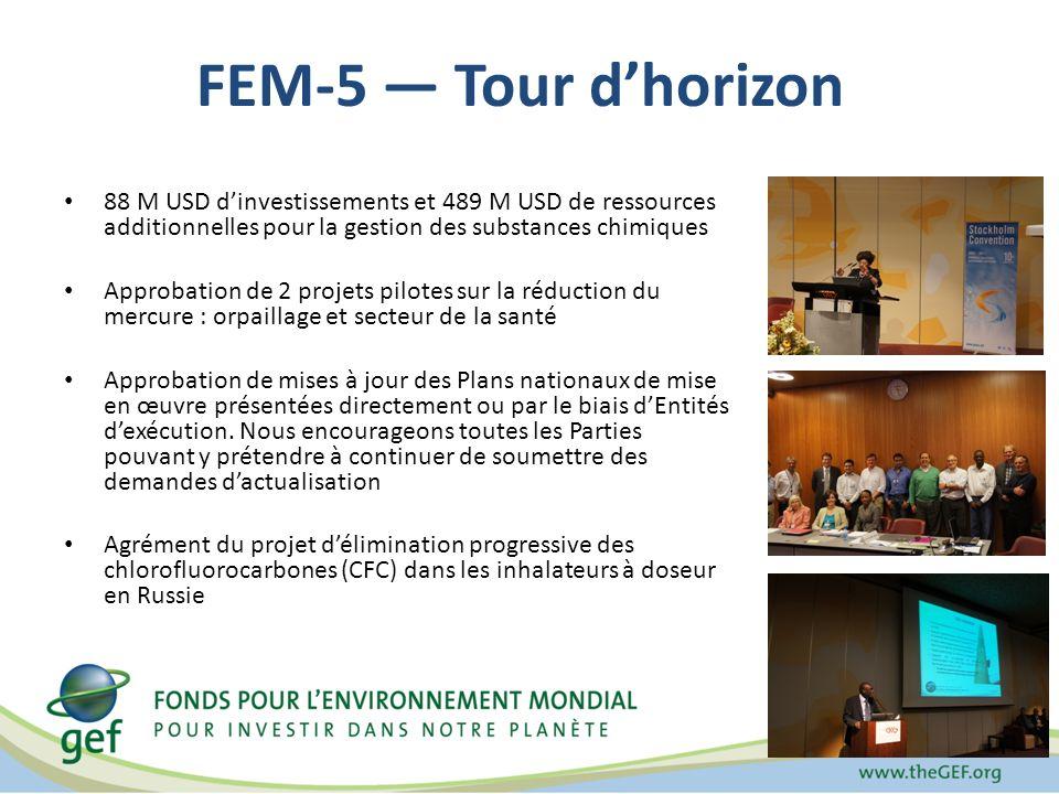 FEM-5 Tour dhorizon 88 M USD dinvestissements et 489 M USD de ressources additionnelles pour la gestion des substances chimiques Approbation de 2 projets pilotes sur la réduction du mercure : orpaillage et secteur de la santé Approbation de mises à jour des Plans nationaux de mise en œuvre présentées directement ou par le biais dEntités dexécution.