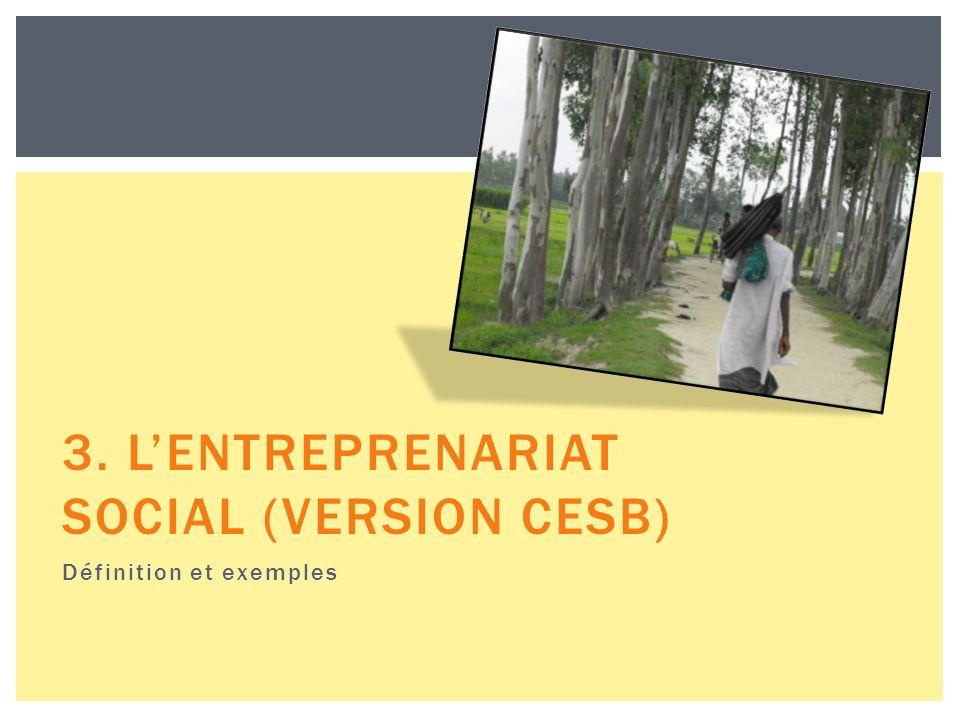 3. LENTREPRENARIAT SOCIAL (VERSION CESB) Définition et exemples