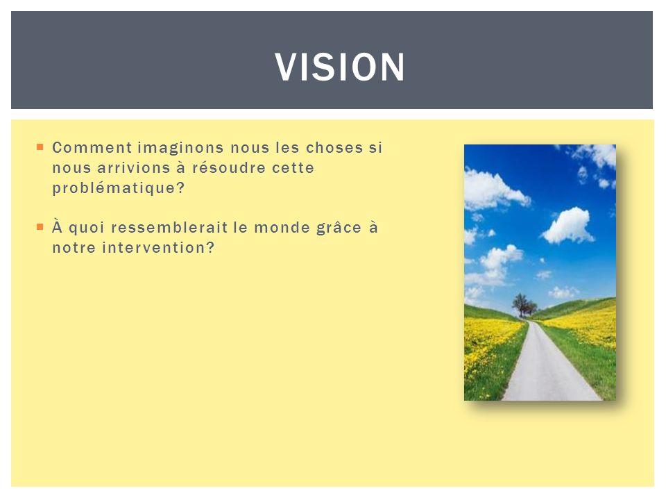 VISION Comment imaginons nous les choses si nous arrivions à résoudre cette problématique.