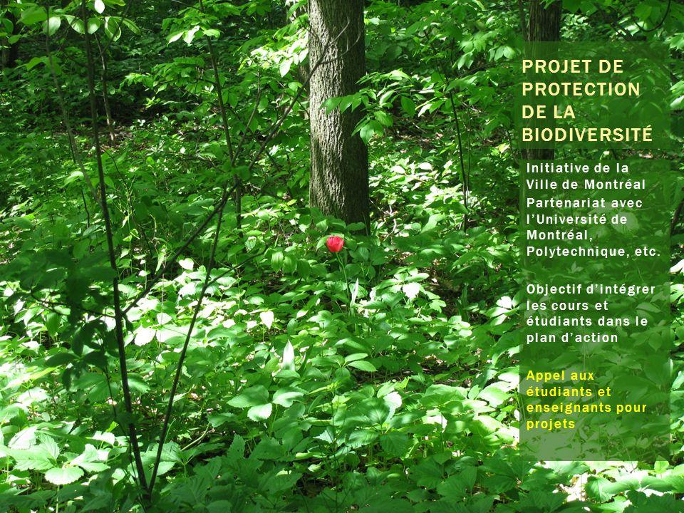 PROJET DE PROTECTION DE LA BIODIVERSITÉ Initiative de la Ville de Montréal Partenariat avec lUniversité de Montréal, Polytechnique, etc.
