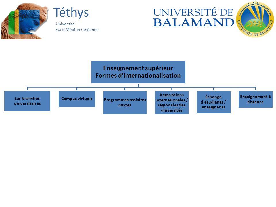 Téthys Université Euro-Méditerranéenne Enseignement supérieur Formes d'internationalisation Les branches universitaires Campus virtuels Programmes sco