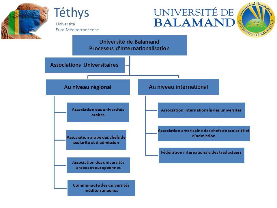 Téthys Université Euro-Méditerranéenne Université de Balamand Processus dInternationalisation Au niveau régional Association des universités arabes As