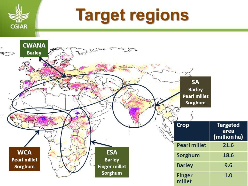 Target regions CWANA Barley WCA Pearl millet Sorghum ESA Barley Finger millet Sorghum SA Barley Pearl millet Sorghum Crop Targeted area (million ha) P