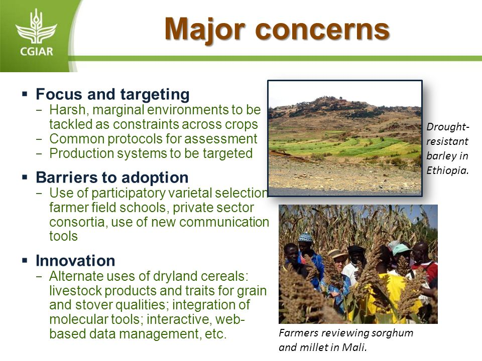 Major concerns Focus and targeting Harsh, marginal environments to be tackled as constraints across crops Common protocols for assessment Production systems to be targeted Barriers to adoption Use of participatory varietal selection farmer field schools, private sector consortia, use of new communication tools Innovation Alternate uses of dryland cereals: livestock products and traits for grain and stover qualities; integration of molecular tools; interactive, web- based data management, etc.