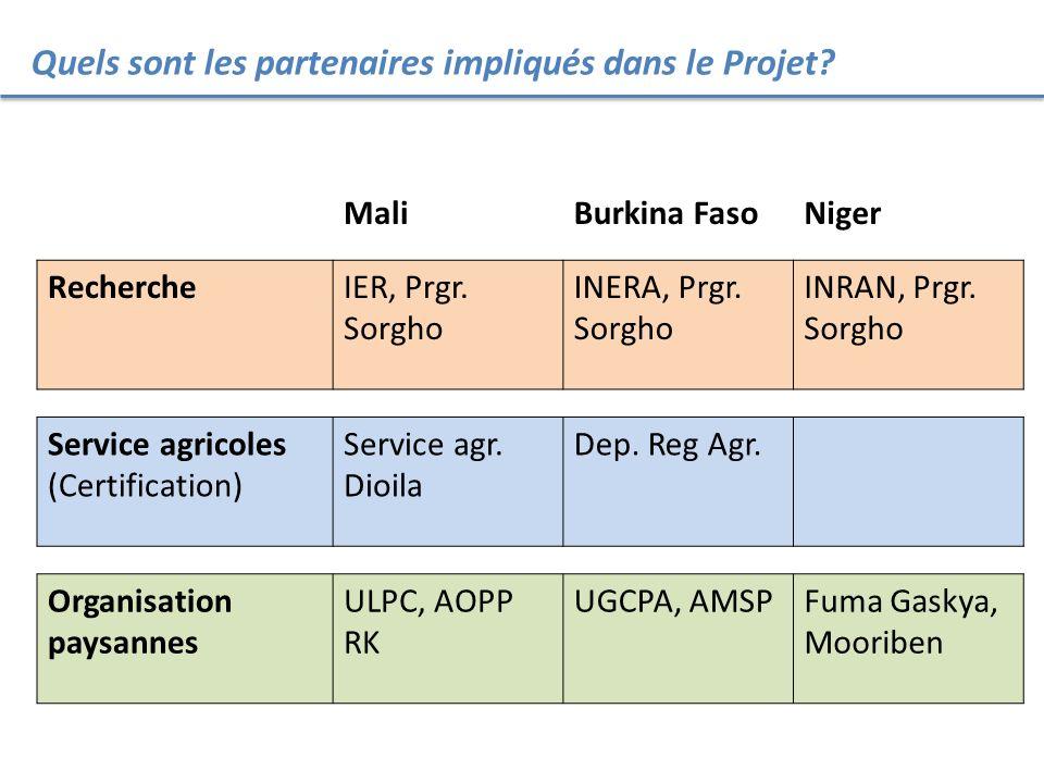 Quels sont les partenaires impliqués dans le Projet? MaliBurkina FasoNiger RechercheIER, Prgr. Sorgho INERA, Prgr. Sorgho INRAN, Prgr. Sorgho Service