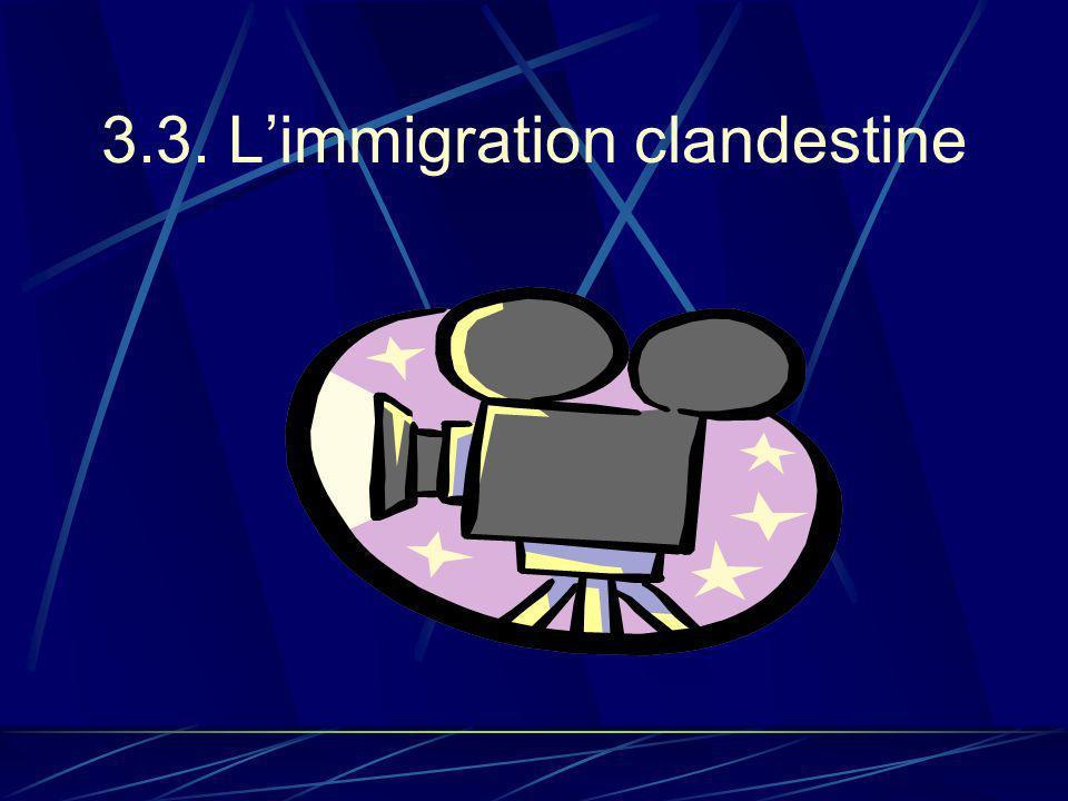 3.3. Limmigration clandestine