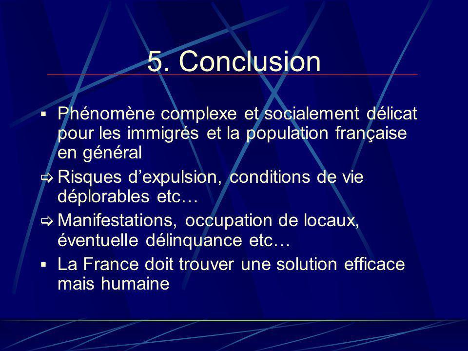 5. Conclusion Phénomène complexe et socialement délicat pour les immigrés et la population française en général Risques dexpulsion, conditions de vie