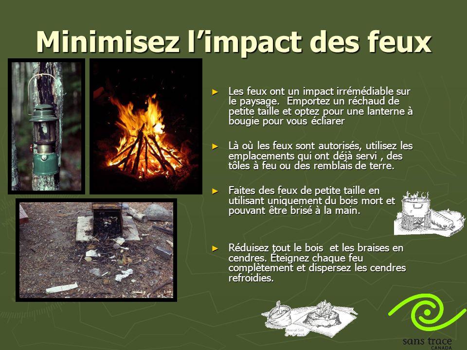 Minimisez limpact des feux Les feux ont un impact irrémédiable sur le paysage.