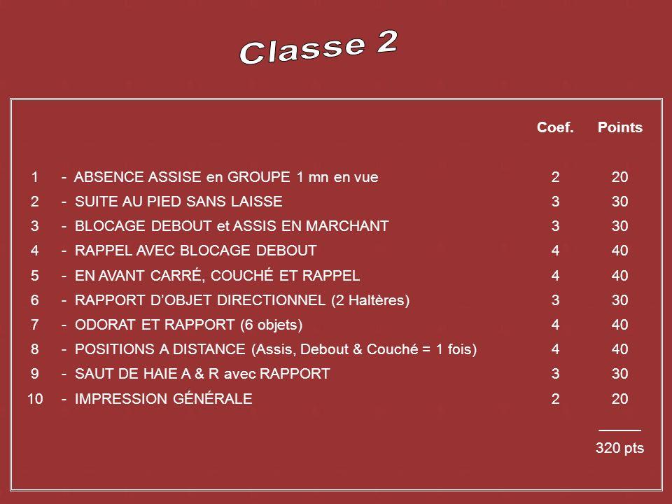 2) Suite sans laisse 1) Absence 3) Blocage debout en marchant 4) Rappel simple 10) Impression générale 8) Positions à distance 9) Saut de haie 7) Rapp
