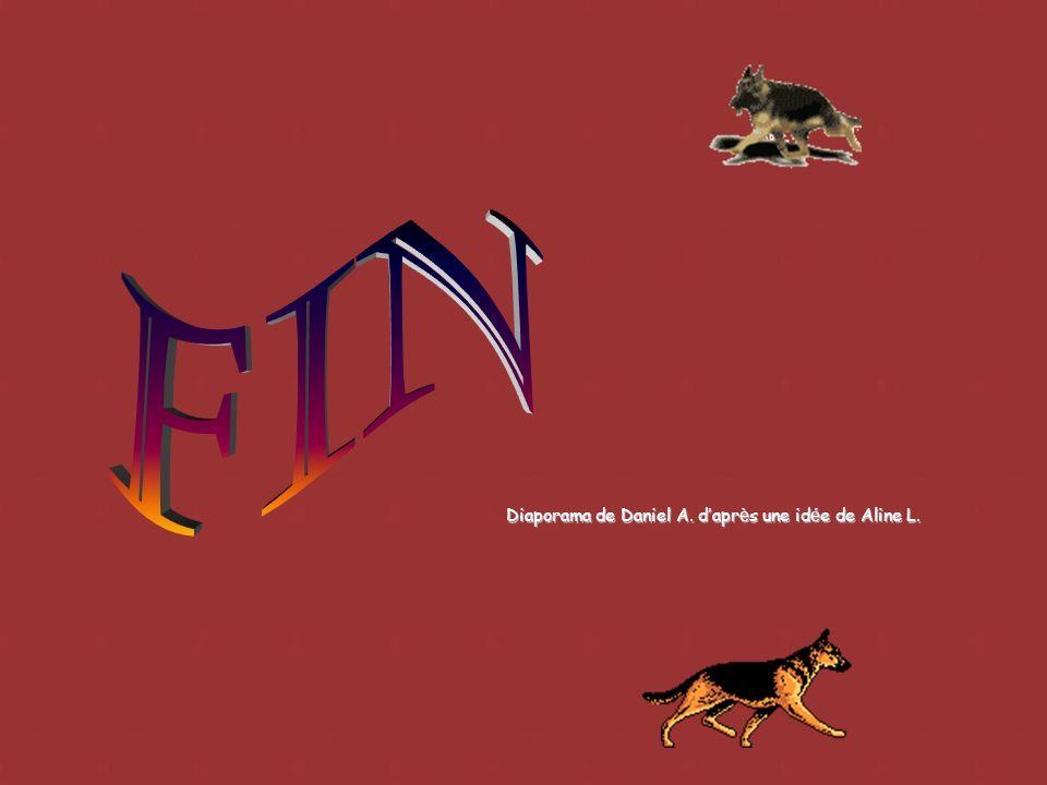 Les meilleurs chiens de lannée formeront léquipe de France jusquà concurrence de 6, pour les Championnats du Monde qui se déroulent chaque année dans