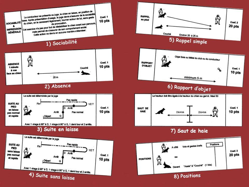 1) Sociabilité 5) Rappel simple 2) Absence 3) Suite en laisse 7) Saut de haie 8) Positions 4) Suite sans laisse 6) Rapport dobjet