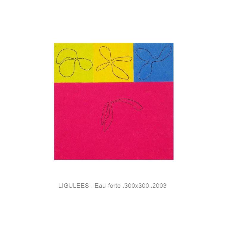 LIGULEES. Eau-forte.300x300.2003
