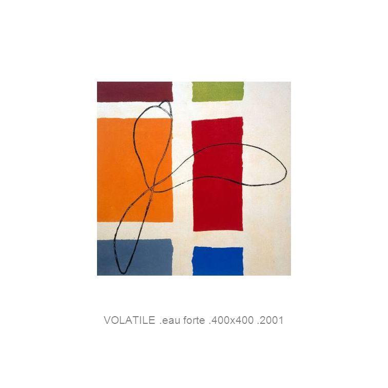 VOLATILE.eau forte.400x400.2001