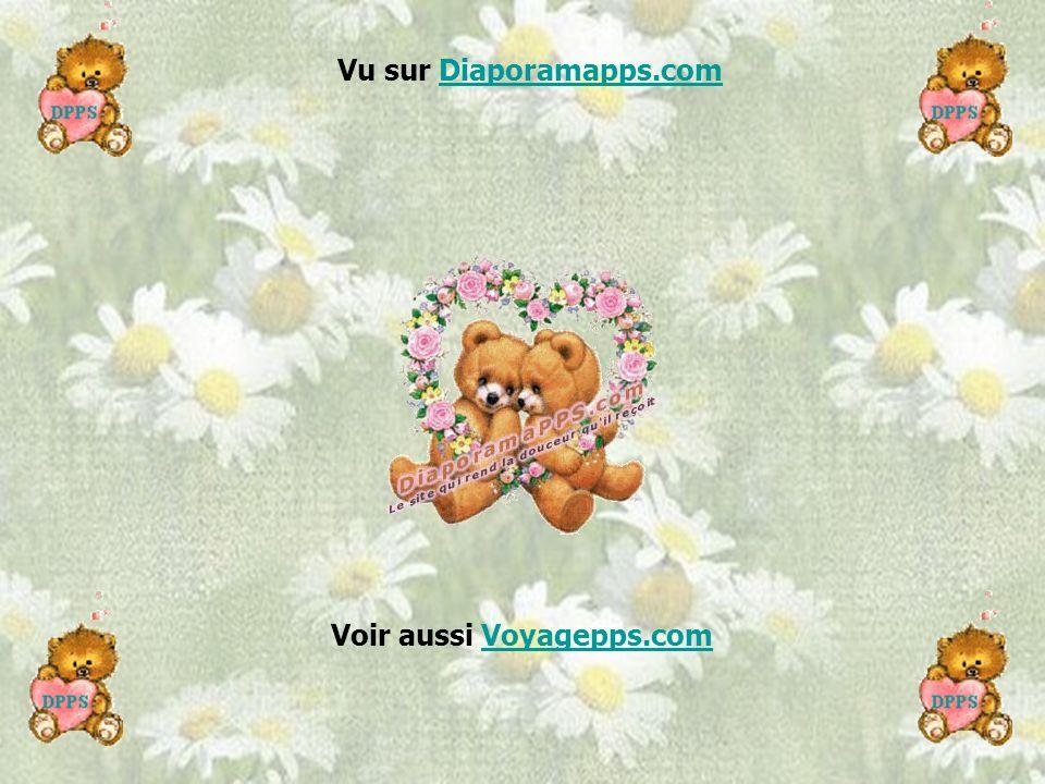 N'attends jamais demain pour dire à quelqu'un que tu l'aimes. Fais le tout de suite ! L'amour c'est la vie. http://www.chezserenite.com