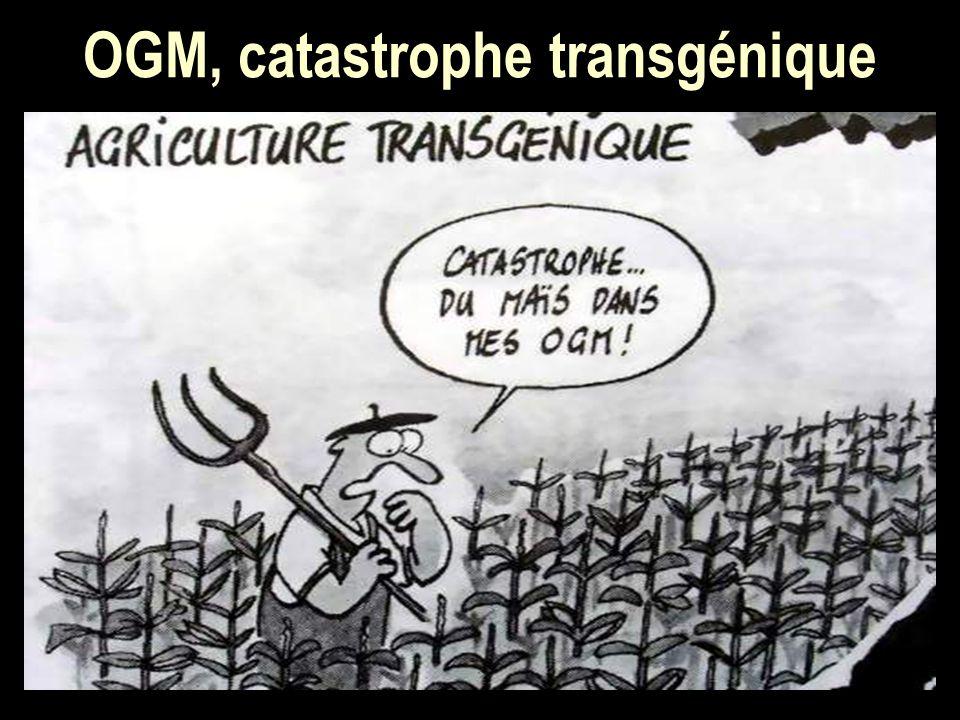 OGM, catastrophe transgénique