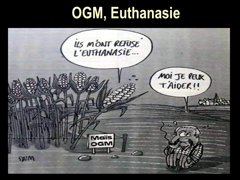 OGM, Euthanasie
