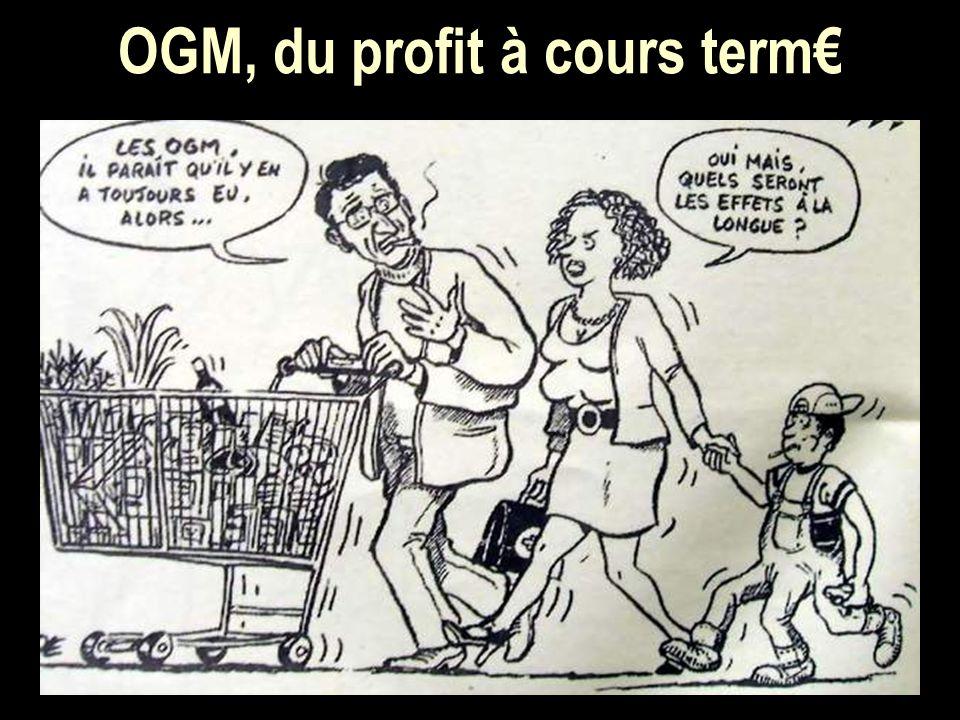OGM, du profit à cours term