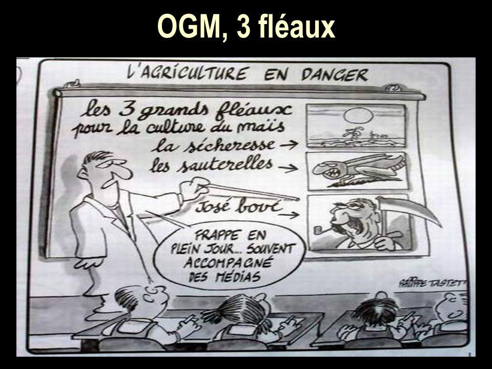 OGM, 3 fléaux