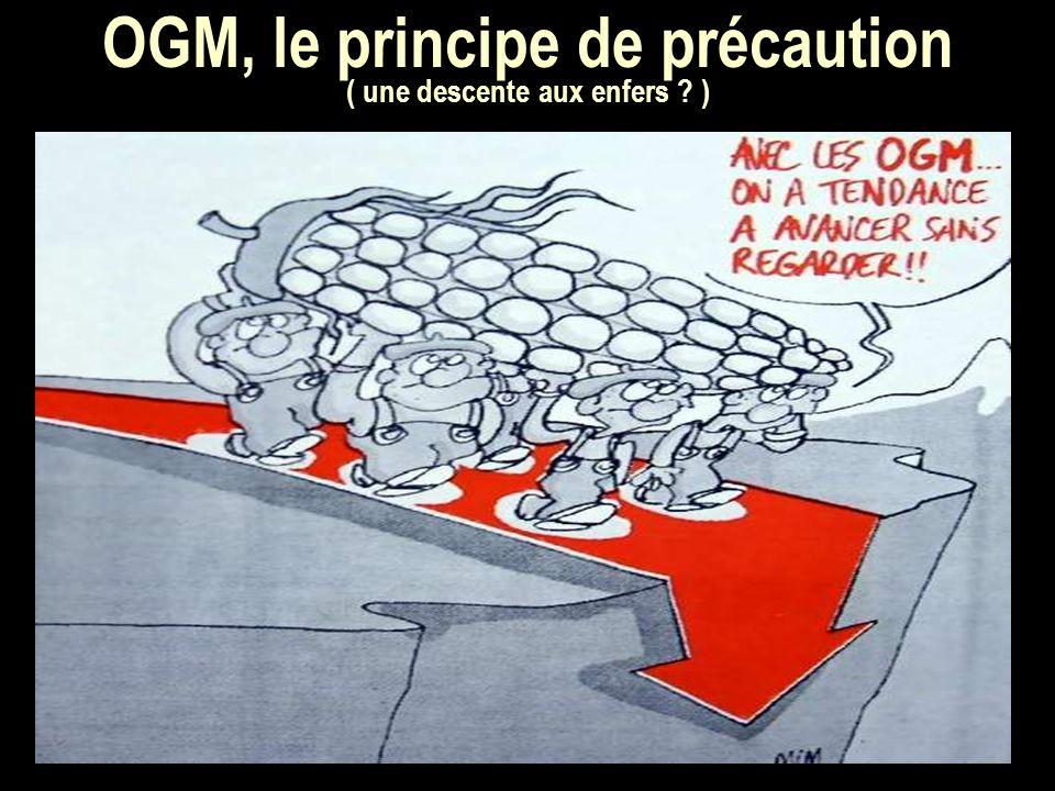 OGM, le principe de précaution ( une descente aux enfers )
