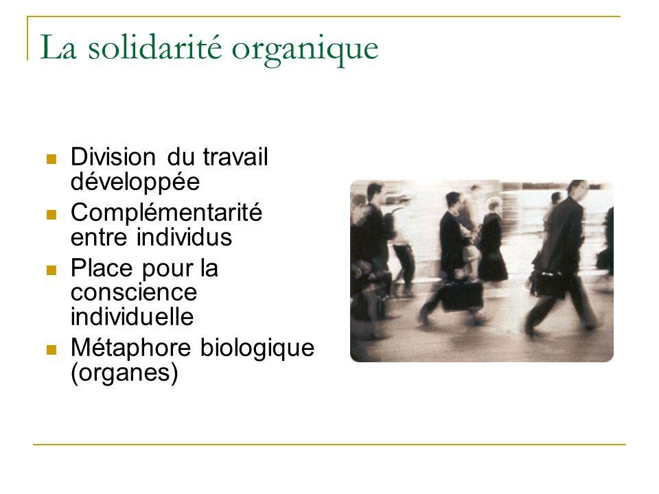 La solidarité organique Division du travail développée Complémentarité entre individus Place pour la conscience individuelle Métaphore biologique (organes)