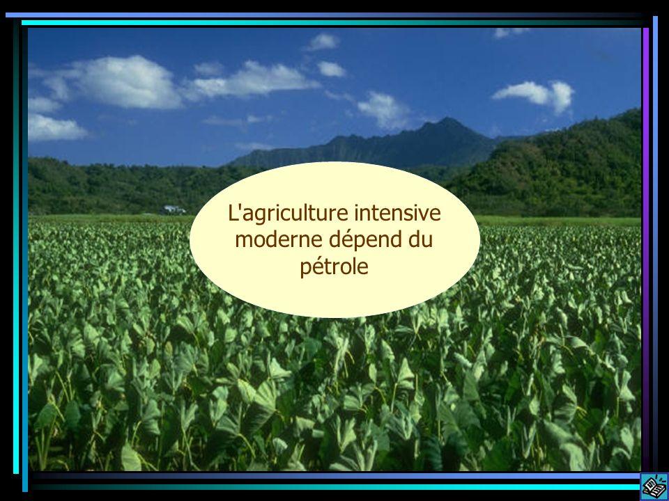 L agriculture intensive moderne dépend du pétrole