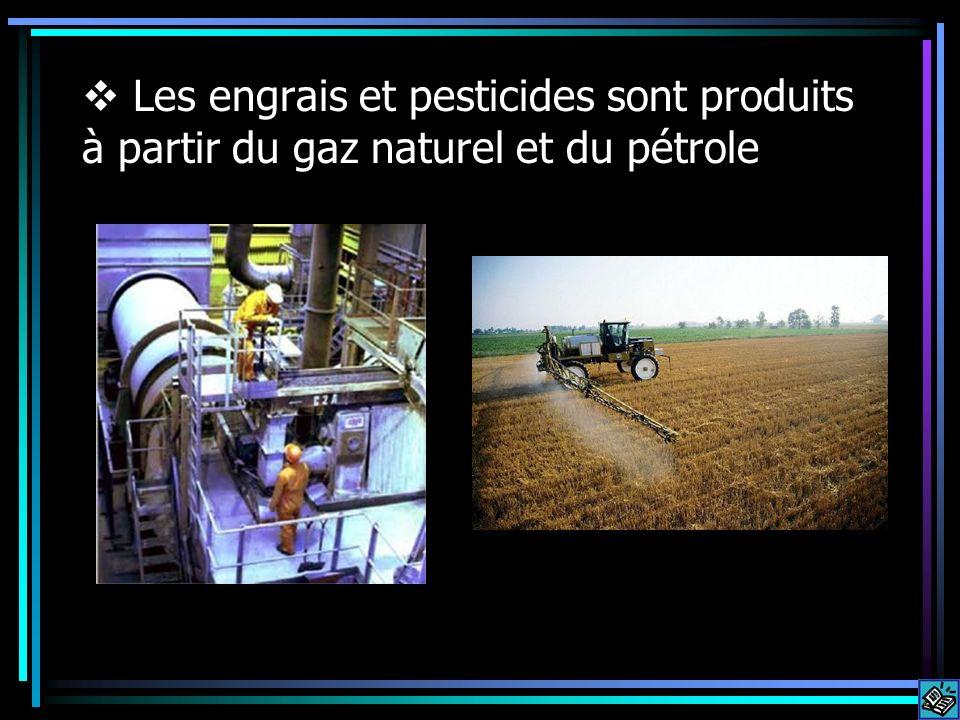 Les engrais et pesticides sont produits à partir du gaz naturel et du pétrole