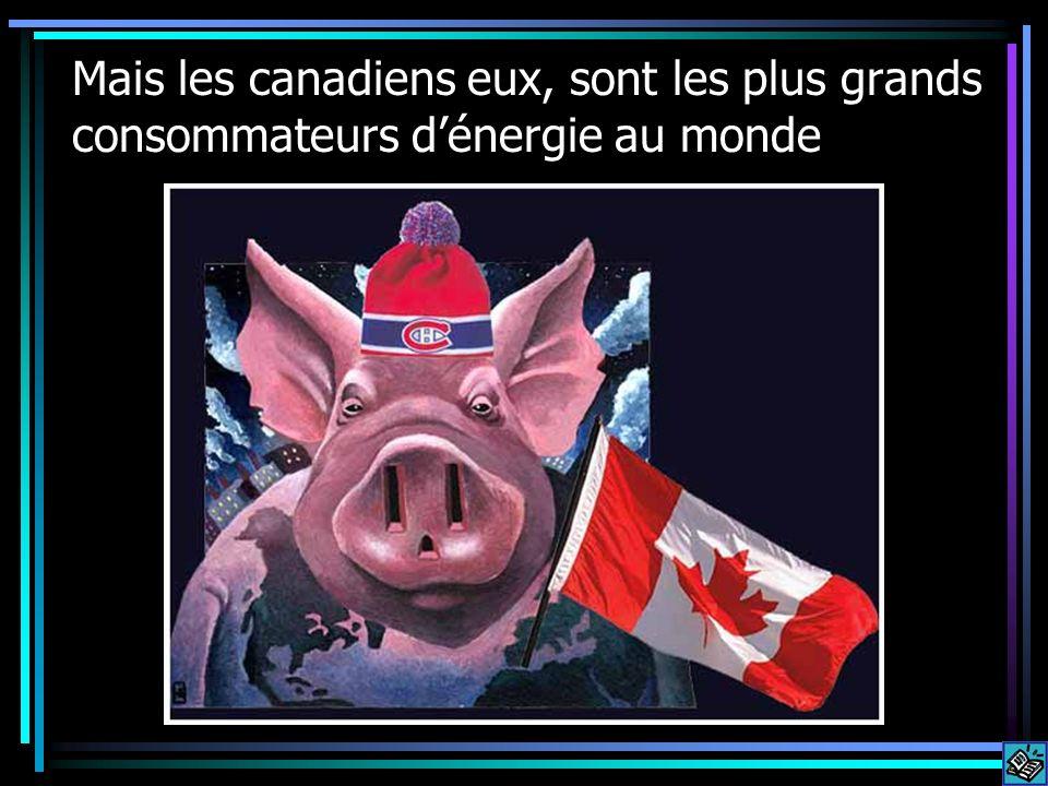 Mais les canadiens eux, sont les plus grands consommateurs dénergie au monde