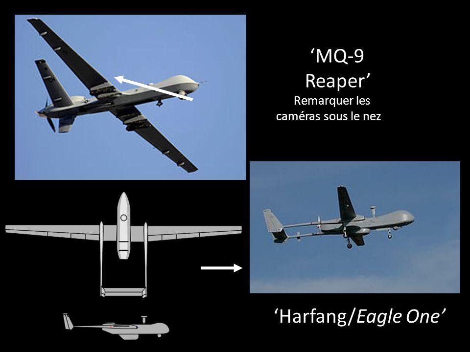 MQ-9 Reaper Remarquer les caméras sous le nez Harfang/Eagle One